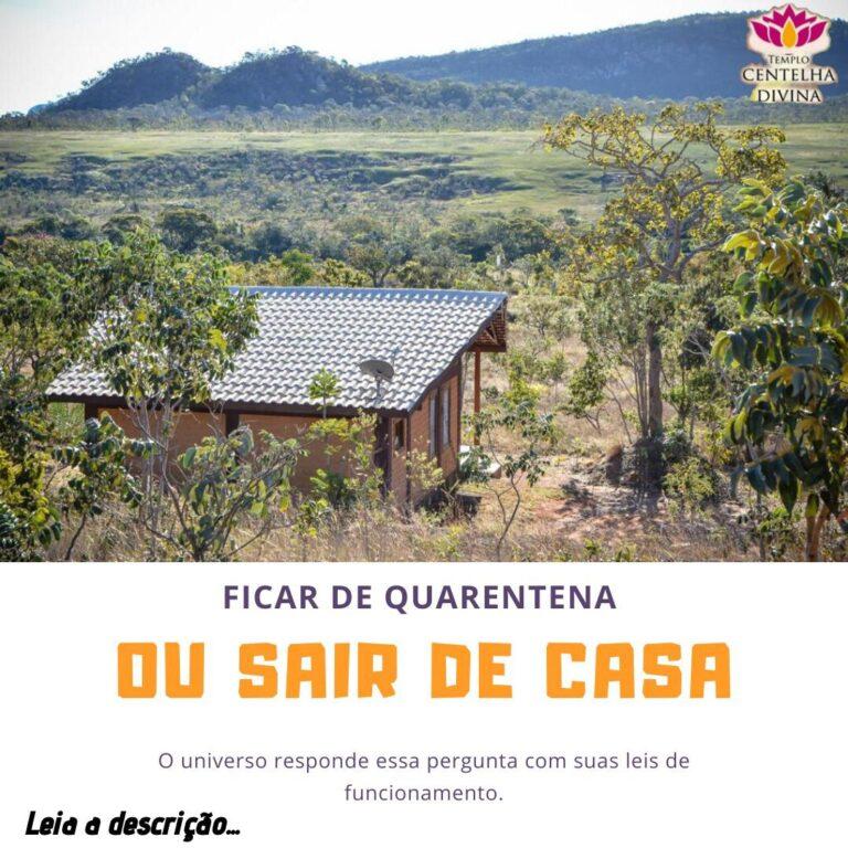 Read more about the article Ficar de quarentena ou sair de casa durante a pandemia do Coronavirus